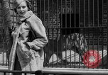 Image of fur fashions New York City USA, 1935, second 24 stock footage video 65675051172