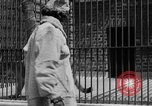 Image of fur fashions New York City USA, 1935, second 25 stock footage video 65675051172