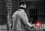 Image of fur fashions New York City USA, 1935, second 28 stock footage video 65675051172