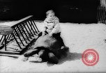 Image of baby animals Europe, 1960, second 25 stock footage video 65675051193