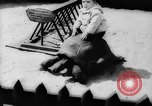 Image of baby animals Europe, 1960, second 27 stock footage video 65675051193