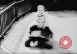 Image of baby animals Europe, 1960, second 29 stock footage video 65675051193