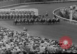 Image of horse Venetian May Kentucky United States USA, 1960, second 12 stock footage video 65675051214