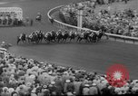 Image of horse Venetian May Kentucky United States USA, 1960, second 13 stock footage video 65675051214