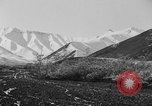 Image of Carpenter Whitney Expedition Alaska United States USA, 1929, second 58 stock footage video 65675051270
