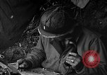 Image of United States 87th Chemical Mortar Battalion Carentan France, 1944, second 20 stock footage video 65675051322