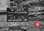 Image of United States 35th Infantry Division Saint Lo France, 1944, second 3 stock footage video 65675051328