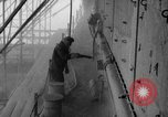 Image of United States ship Langley Philadelphia Pennsylvania USA, 1951, second 57 stock footage video 65675051349