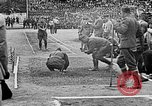 Image of Allied athletes Joinville Le Pont France, 1919, second 17 stock footage video 65675051374