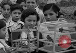 Image of birds Mexico, 1936, second 15 stock footage video 65675051388