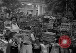 Image of birds Mexico, 1936, second 24 stock footage video 65675051388