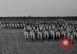 Image of Governor's Day Alexandria Louisiana USA, 1936, second 42 stock footage video 65675051398