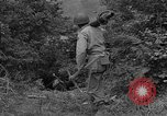 Image of American soldiers Cherbourg Normandy France, 1944, second 21 stock footage video 65675051430