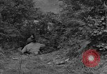Image of American soldiers Cherbourg Normandy France, 1944, second 31 stock footage video 65675051430