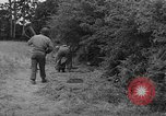 Image of American soldiers Cherbourg Normandy France, 1944, second 45 stock footage video 65675051430