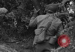 Image of American soldiers Cherbourg Normandy France, 1944, second 15 stock footage video 65675051431