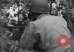 Image of American soldiers Cherbourg Normandy France, 1944, second 54 stock footage video 65675051431