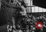 Image of Allied troops France, 1944, second 21 stock footage video 65675051466
