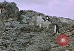 Image of South Pole expedition South Pole, 1939, second 23 stock footage video 65675051521