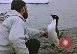 Image of South Pole expedition South Pole, 1939, second 31 stock footage video 65675051521