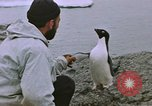 Image of South Pole expedition South Pole, 1939, second 35 stock footage video 65675051521