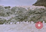 Image of South Pole expedition South Pole, 1939, second 43 stock footage video 65675051521