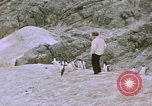 Image of South Pole expedition South Pole, 1939, second 51 stock footage video 65675051521