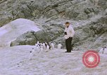 Image of South Pole expedition South Pole, 1939, second 52 stock footage video 65675051521