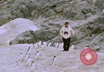 Image of South Pole expedition South Pole, 1939, second 55 stock footage video 65675051521