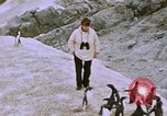 Image of South Pole expedition South Pole, 1939, second 58 stock footage video 65675051521