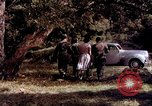 Image of People visiting a forest in their 1939 Ford car United States USA, 1939, second 30 stock footage video 65675051552
