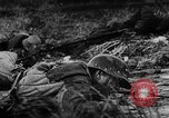 Image of Soviet forces resist German invasion Eastern Front, 1944, second 38 stock footage video 65675051621