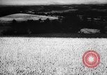 Image of economic development soon after end of World War II Europe, 1945, second 58 stock footage video 65675051623