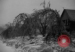 Image of damage from sleet Duluth Minnesota USA, 1935, second 12 stock footage video 65675051631