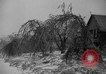 Image of damage from sleet Duluth Minnesota USA, 1935, second 13 stock footage video 65675051631