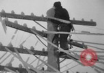 Image of damage from sleet Duluth Minnesota USA, 1935, second 32 stock footage video 65675051631