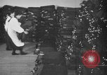 Image of Japanese people Japan, 1943, second 59 stock footage video 65675051696