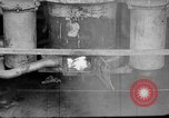 Image of Japanese people Japan, 1943, second 27 stock footage video 65675051697