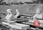 Image of Japanese people Japan, 1943, second 27 stock footage video 65675051699