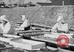 Image of Japanese people Japan, 1943, second 28 stock footage video 65675051699