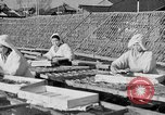 Image of Japanese people Japan, 1943, second 29 stock footage video 65675051699