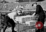 Image of Japanese people Japan, 1943, second 33 stock footage video 65675051699