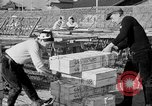Image of Japanese people Japan, 1943, second 34 stock footage video 65675051699