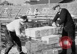 Image of Japanese people Japan, 1943, second 35 stock footage video 65675051699