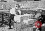 Image of Japanese people Japan, 1943, second 38 stock footage video 65675051699
