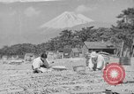 Image of Japanese people Japan, 1943, second 41 stock footage video 65675051699
