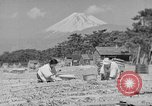 Image of Japanese people Japan, 1943, second 42 stock footage video 65675051699