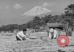 Image of Japanese people Japan, 1943, second 43 stock footage video 65675051699