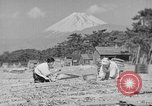 Image of Japanese people Japan, 1943, second 45 stock footage video 65675051699