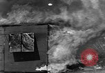 Image of Testing effectiveness of incendiary bombing Florida United States USA, 1945, second 31 stock footage video 65675051709
